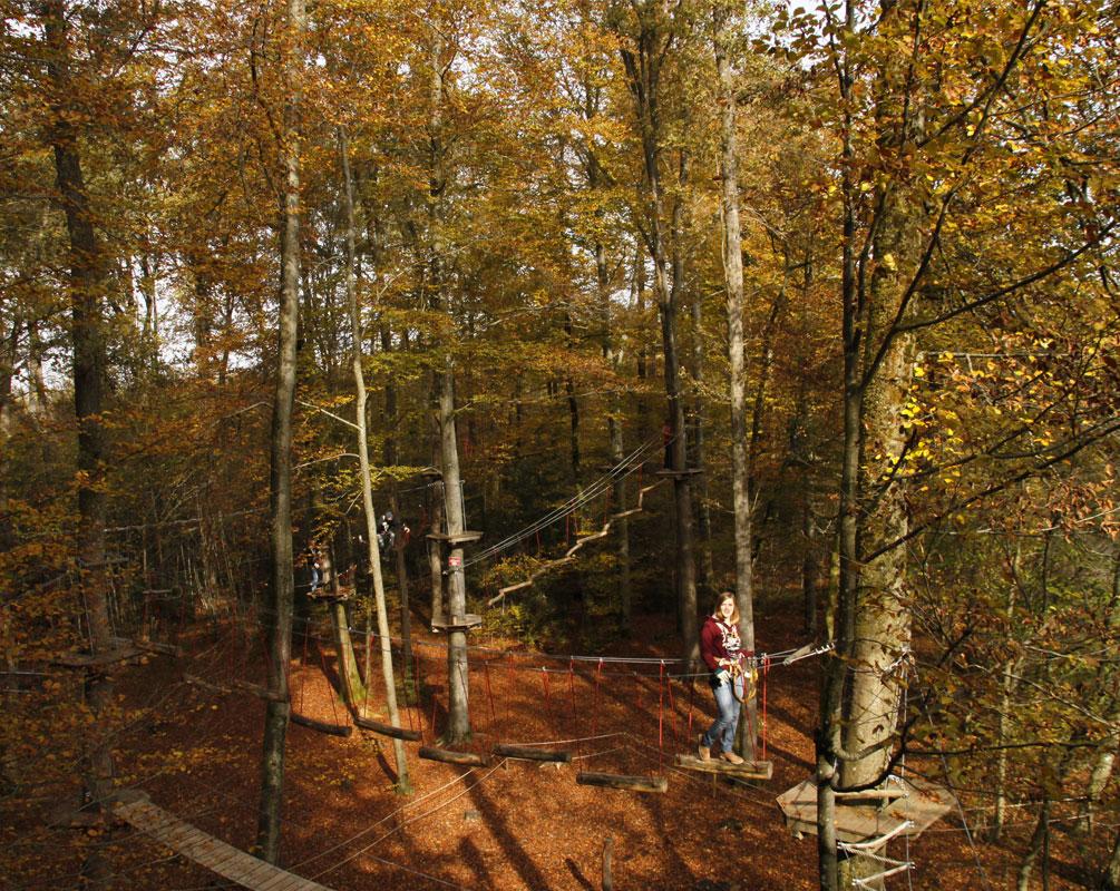 Herbst im Kletterwald München