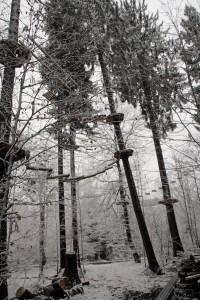 Sturmschaden im Kletterwald München